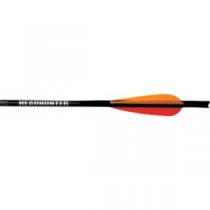 Barnett Field Tip Carbon 20 Bolts