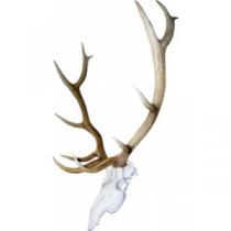 Mountain Mike's Skull Master Elk Antler Mounting Kit