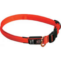 Nitelze Lighted Dog Collar - Orange (LARGE)