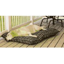 Cabela's Indoor/Outdoor Dog Bed - Green Plaid (SMALL)