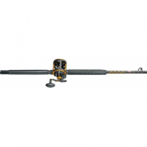 Penn Squall Lever Drag Conventional Combo - Stainless